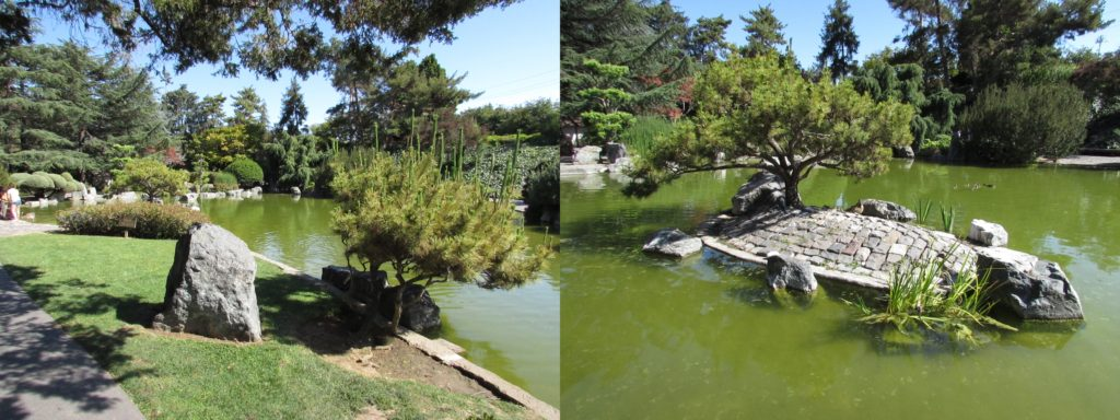 Japanese Friendship Garden (1)